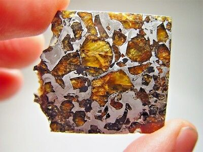 Museum Quality! Amazing Crystals! Beautiful Brahin Pallasite Meteorite 20.1 Gms