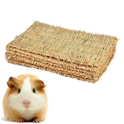 Hamster Grass Pad Chew Mat Breakers Toy Rabbit Rat Guinea Pig House Animal US