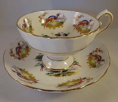 Up To 7 Hudson Middleton Royal Sutherland Exotic Bird Pheasant Tea Cups Saucers