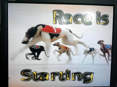 Gaminator, Runnind Dogs, for Slot Machine Ticket office Professional Software