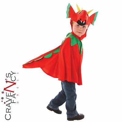 Child Friendly Dragon Costume Welsh Wales Fancy Dress Mascot Kids Outfit Age 3-5