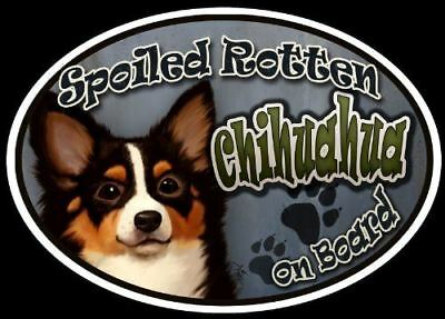 Chihuahua (long hair) - Spoiled Rotten Oval Dog Magnet for Cars