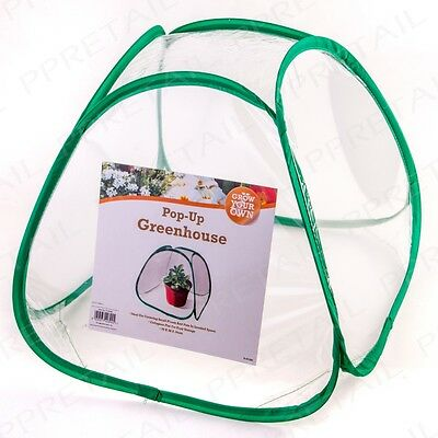 Pop Up Greenhouse Tent Small Plant Pot Protector Cover Patio Cloche Propagator