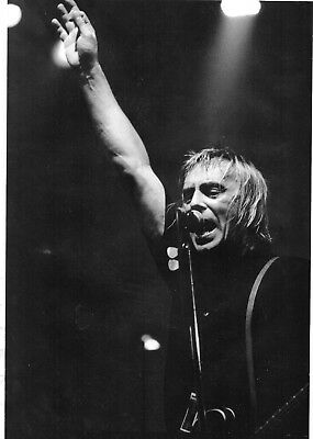 Paul Weller                                                Picture (MP 28)