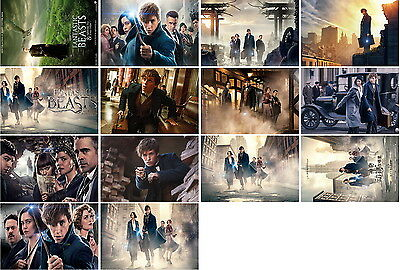 14 postcards of Fantastic Beasts and Where to Find Them moive poster magic new