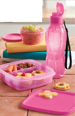 Tupperware Perfectly Pink Lunch Set Sandwich Keeper 16-oz Tumbler Ideal Bowl New