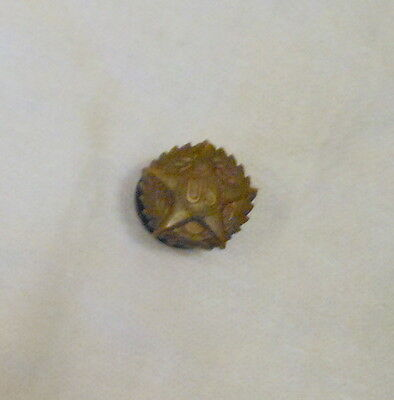 WWI Victory Star US Disharge Lapel Button