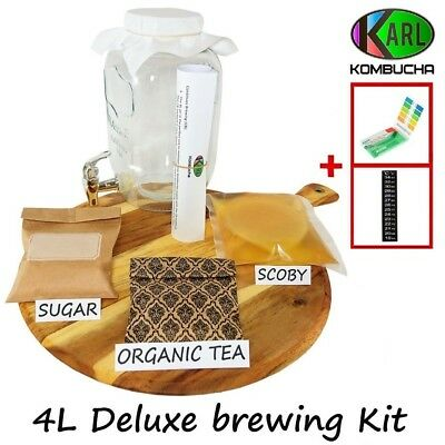 Deluxe Kombucha Tea Brewing Kit Organic Scoby 4L glass Dispenser PH strips & mor
