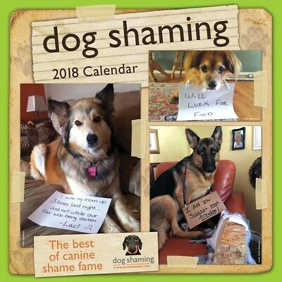 Dog Shaming 2018 Square Wall Calendar by Andrews McMeel, Free Postage