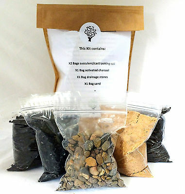 Terrarium kit including succulent/cacti soil, charcoal, drainage layer and sand