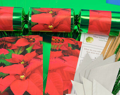 8 Christmas Poinsettia Make & Fill Your Own Christmas Crackers Kit