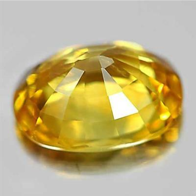 10 x 14mm Gem Oval Shape Yellow Sapphire Natural Loose Gemstone Jewelry Gifts WT