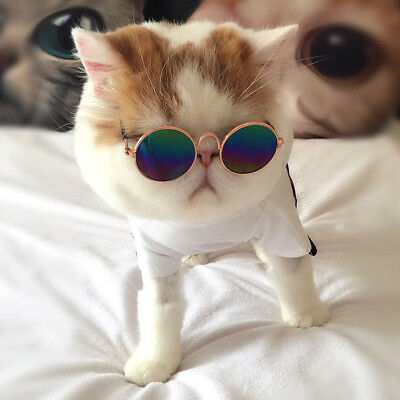 Dog Cat Pet Fashion Metal frame Glasses Round Sunglasses Grooming Accessories