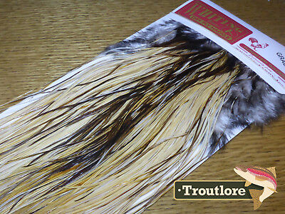 Whiting Dry Fly Saddle Unique Variant Pro Grade Fly Tying Rooster Cape Feathers