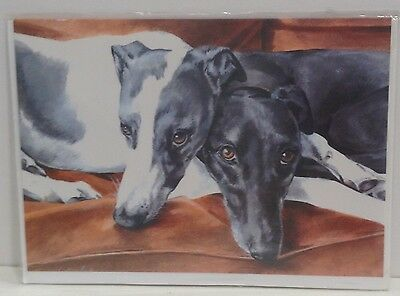 Caroline Cook Art Greeting Dog Card Greyhounds Whippets  Creature Comforts