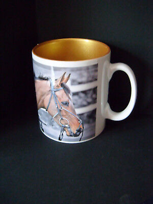 Coneygree GOLD CUP Cheltenham Mug horse Bradstock Wetherby Doncaster Newbury