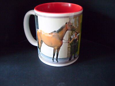 Cirrus Des Aigles French France Barbe Gelding Horse racing riding Birthday