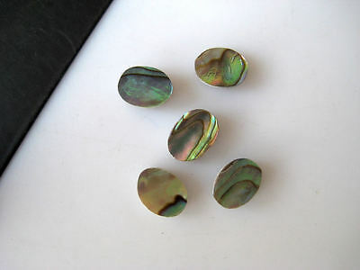 20 Pieces Natural Mother of Pearl Oval Shaped Cabochons Flat Back 6x8mm BB154