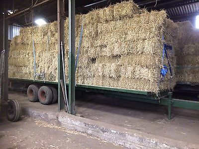 Small Bale Hay 2017 2nd Cut Ryegrass  Hay Bales