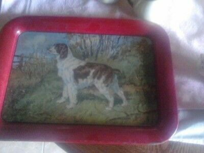 Vintage Antique Brittany Dog Tin Tray