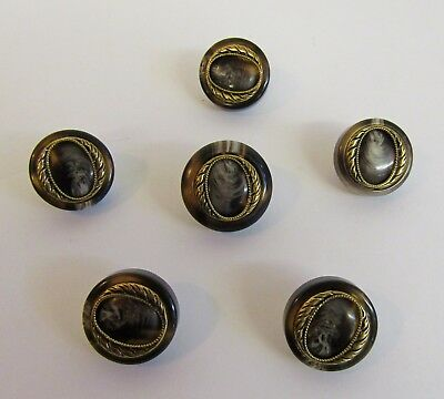 """Vintage * 6 Cameo/Tortoise Style Period Buttons * 1"""" & 7/8"""" (25/21 mm) Diameter"""