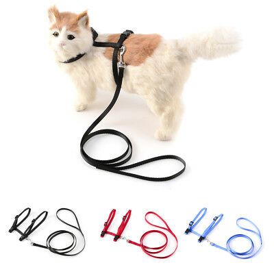 Collier Laisse Chat Chien Harnais Nylon Promenade Animaux Sangle 3 couleur