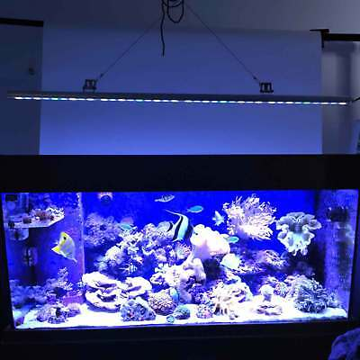 PopularGrow 54W LED Aquarium Light bar Blue&White Coral Reef Fish Tank lighting