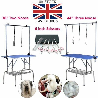 Professional Pet Dog Grooming Table Arm And 6pcs Grooming scissors Hair Cutting