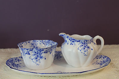 Beautiful Shelley Dainty Blue 3 Pc. Open Sugar Creamer And Under Tray