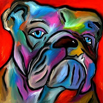 CANVAS Thats Bull Dog Abstract by Tom Fedro 12x12 Gallery Wrap Wall Decor