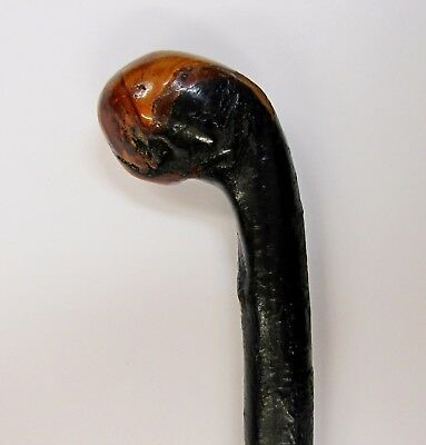 """* Vintage * Blackthorn Shillelagh * Beautiful Patina * 37"""" Hand Crafted Cane *"""