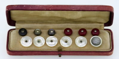 Beautiful Cased Set Antique Set Of Twelve Mother of Pearl Buttons