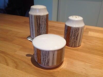 Vintage Midwinter Sienna Cruet Set