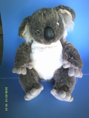 Nice Large Realistic Koala Bear with Leather Nose