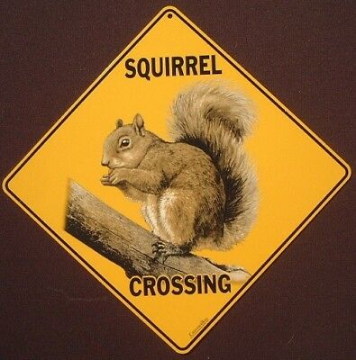 SQUIRREL CROSSING SIGN aluminum decor novelty squirrels wildlife animals print