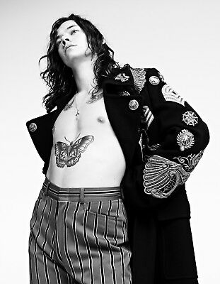 HARRY STYLES POSTER (HSe) - VARIOUS SIZES - INCLUDES FREE UK P&P