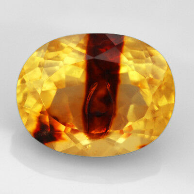 17.8CT Baltic Golden Amber with Insect Faceted Oval Cut Natural UQFP140