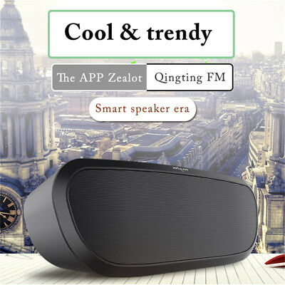 Wireless Bluetooth Speaker TF Card AUX FM Radio Music Stereo Player Loudspeaker