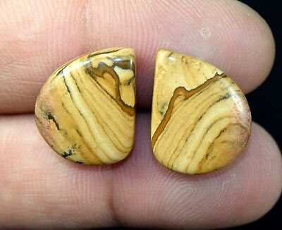22.25 Cts. 100% Natural Picture Jasper  Fancy Cabochon Matched Pair Gemstones