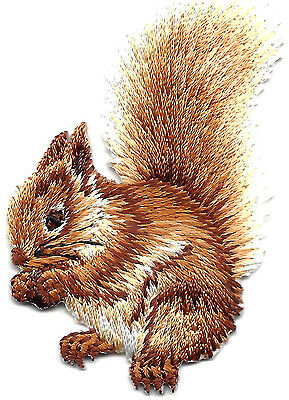 SQUIRREL BUSHY TAILED Iron On Patch Forest Animal