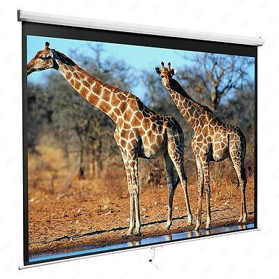 """120"""" 1:1 Manual Pull Down Projection Screen Home HD Movie Theater Matte White"""
