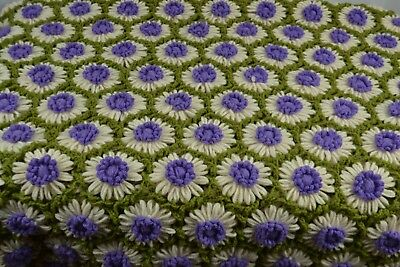 Afghan Granny Square Blanket Throw Flower Crochet Daisy Purple Olive 3D Cream
