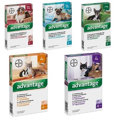 BAYER Dogs Cats Rabbits Flea Control Prevention Spot On Treatment
