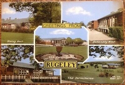 Rugeley Shooting Butts Secondary Modern School 1955 Frith Residential Vintage