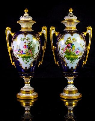 Antique Pair Of Royal Worcester Vase & Covers Painted Birds Of Paradise C.1905