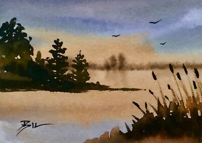 ACEO Original Art Watercolour Painting by Bill Lupton - Evening Beauty