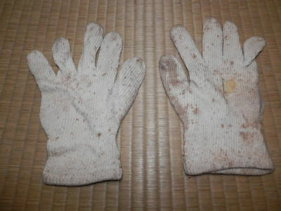 WW2 Japanese Army Gloves.MINT Good.