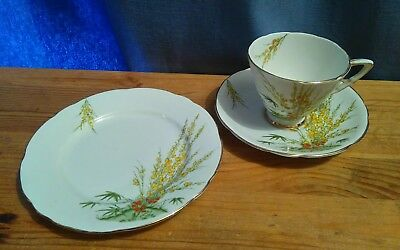 Art Deco Royal Stafford Trio in the Broom Pattern - RN 787047