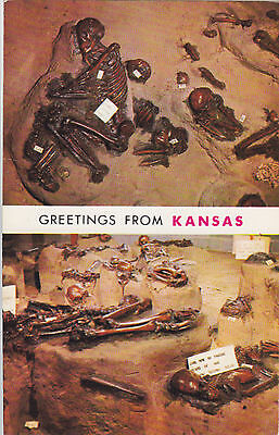 Indian Burials SALINA Kansas U.S.A. Curteich Postcard