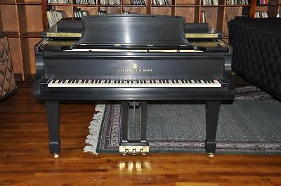 Steinway & Sons B  1979  Collector Selling his 5 B Collection. Reasonable Prices